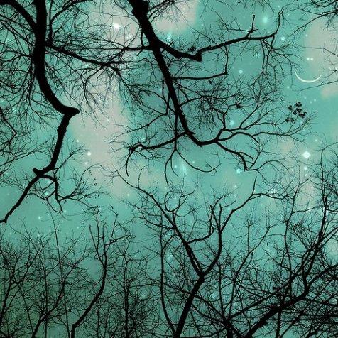 Night Sky, Light